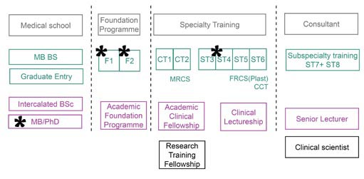 Integrated academic training pathway
