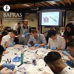 BAPRAS 18th Undergraduate Day Summary