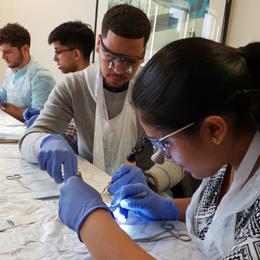 BAPRAS Undergraduate Day 2019 - A Student's Perspective